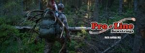 proline bow stings (300x111)